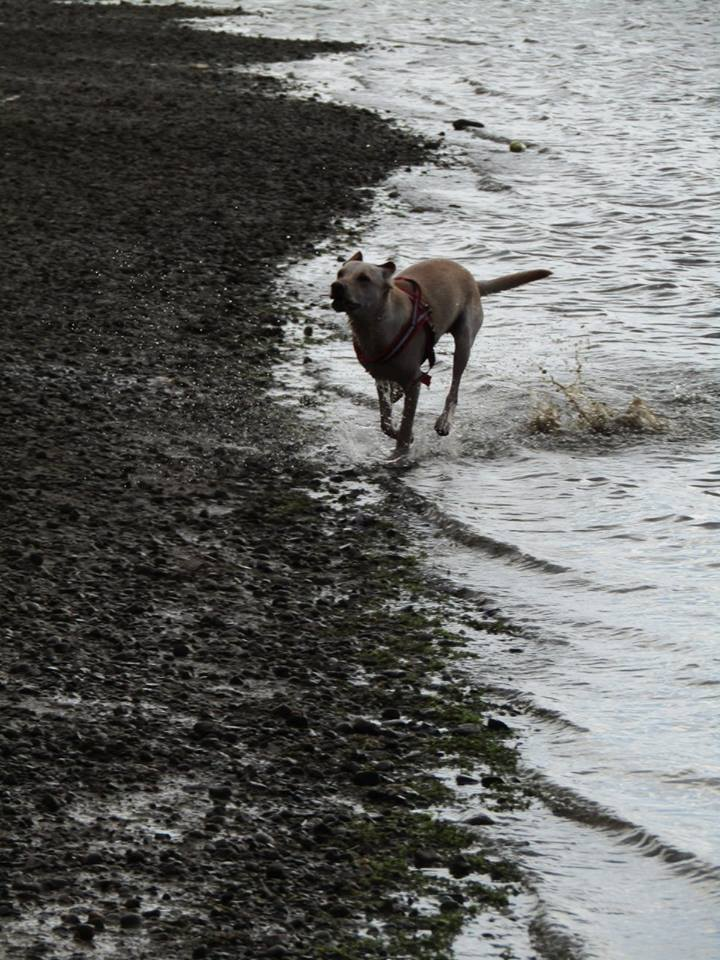running in the mud