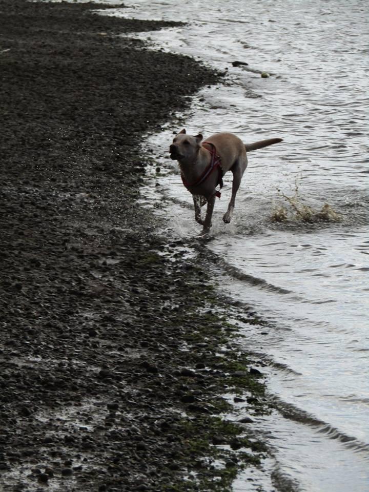 running in the mud